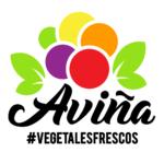 Logo Aviña